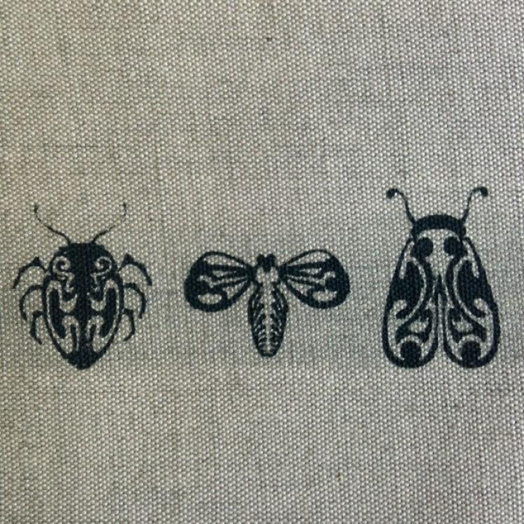 Border Entomology on Stone